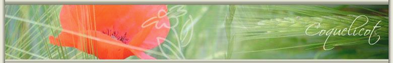 La compagnie des patouilleuses - Le Forum